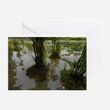 """Singapore Gardens"" Greeting Cards (Pk of 10)"