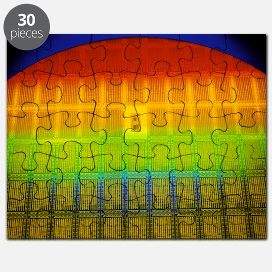 Silicon chip wafer Puzzle