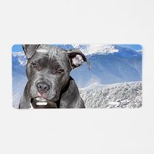 Blue American Pit Bull Terr Aluminum License Plate