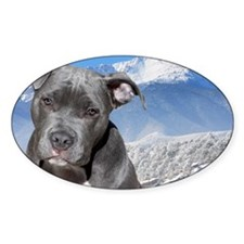Blue American Pit Bull Terrier Pupp Decal
