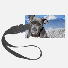 Blue American Pit Bull Terrier P Luggage Tag