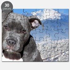 Blue American Pit Bull Terrier Puppy Dog Puzzle