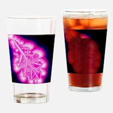 Kirlian image of oak leaf Drinking Glass