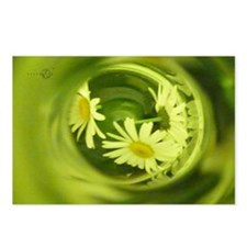 Daisies Bottled Laptop Sk Postcards (Package of 8)