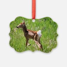 whitetail deer Ornament