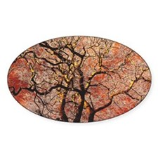 FireTree - 9x12 Decal