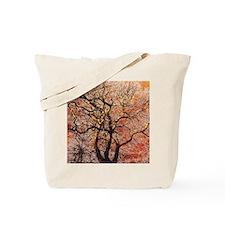 FireTree - 9x12 Tote Bag