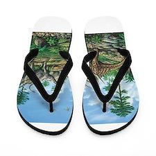 Huayangosaurus Flip Flops