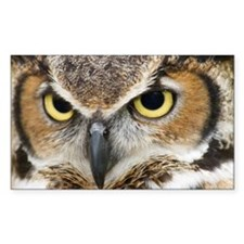 Great Horned Owl Decal