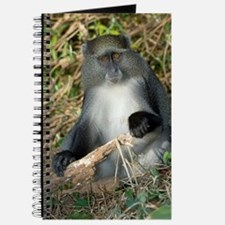 Samango monkey Journal