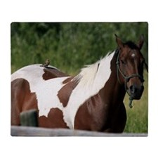 Horse with bird Throw Blanket