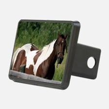 Horse with bird Hitch Cover