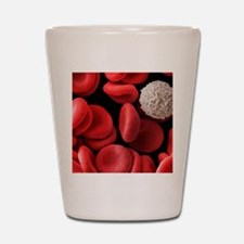 Red and white blood cells, SEM Shot Glass