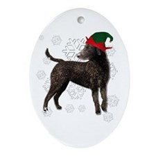 Curly Coated Retriever with elf hat Ornament (Oval