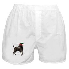 Curly Coated Retriever with elf hat Boxer Shorts