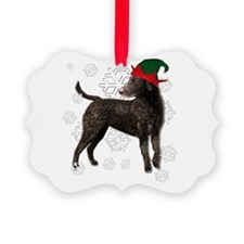 Curly Coated Retriever with elf hat Picture Orname