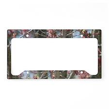 RBG14.7x9.67 License Plate Holder
