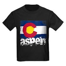 Aspen Grunge Flag T