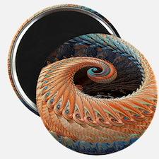 Dragon tail fractal Magnet