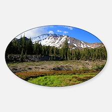 Mount Shasta 24 Sticker (Oval)