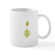 Fritillaria Botanical Mug