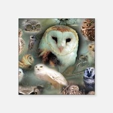 "Happy Owls Square Sticker 3"" x 3"""