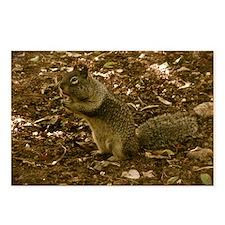 squirrelcheeksmousepad Postcards (Package of 8)