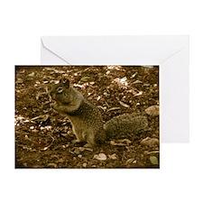 squirrelcheeksmousepad Greeting Card
