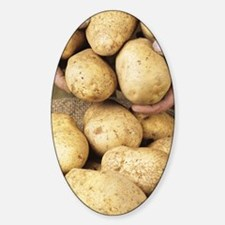 Potatoes Decal