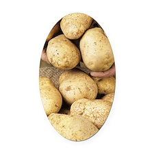 Potatoes Oval Car Magnet