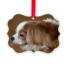 Cavalier King Charles Spaniel, Blenheim Ornament