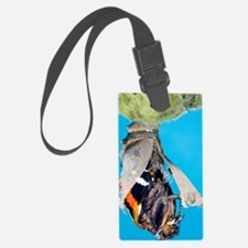 Emerging red admiral butterfly Luggage Tag