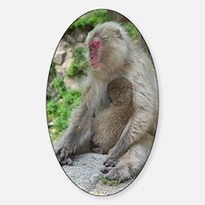 Momma Monkey  Baby (Journal) Decal