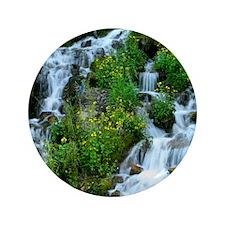"""Mountain spring 3.5"""" Button"""