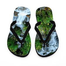 Mountain spring Flip Flops