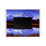 Denali national park Picture Frames