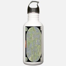 TrystellMap Water Bottle