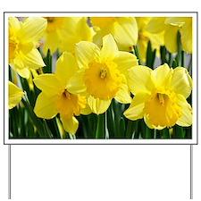 Trumpet Daffodil Yard Sign