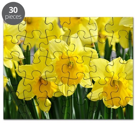 Trumpet Daffodil Puzzle