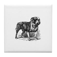 Vintage Bull Dog Tile Coaster