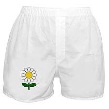 Daisy Flower Boxer Shorts