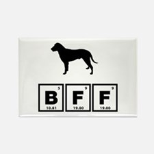 Curly Coated Retriever Rectangle Magnet