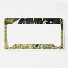 2012_00 License Plate Holder