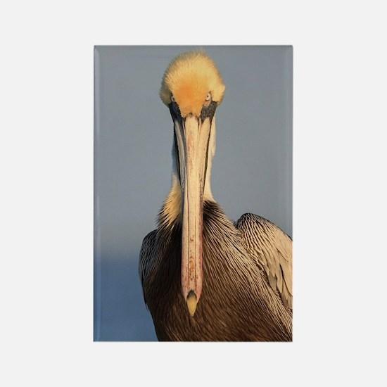 Pelican Attitude Rectangle Magnet