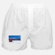 JAN 2007 Ice House Boxer Shorts