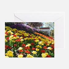 DSC_0408 Greeting Card
