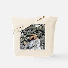 Tote7x7_Sealion_1 Tote Bag