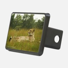 Relaxing Cheetah Hitch Cover