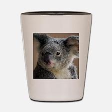 Koala2 Shot Glass