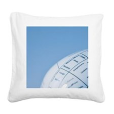Model of human brain Square Canvas Pillow